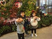 2012-02宜蘭風爭小木屋伯朗蘭花園礁溪武暖餐廳冬山河騎三輪車:DSC05390.JPG