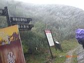 2009-11-17草嶺古道:CIMG4956.JPG