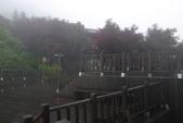 20130614-16太平山_拉拉山:P1020157.JPG