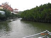 四草生態坐船遊紅樹林好多魚往船上跳台南新化兩日遊981123:CIMG4594.JPG