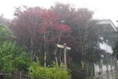 20130614-16太平山_拉拉山:P1020158.JPG