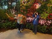 2012-02宜蘭風爭小木屋伯朗蘭花園礁溪武暖餐廳冬山河騎三輪車:DSC05392.JPG
