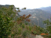 馬拉邦山98.12.8:CIMG5493.JPG