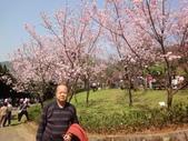 2010-2-26 陽明山花季:DSC01455.JPG