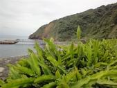 2012-4-17宜蘭龜山島_天南電台許鷹:DSC06606 .JPG