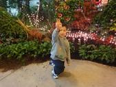 2012-02宜蘭風爭小木屋伯朗蘭花園礁溪武暖餐廳冬山河騎三輪車:DSC05394.JPG