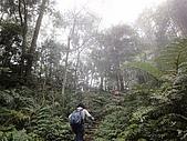 2010-1.5竹東五指山共26人:DSC00623.JPG