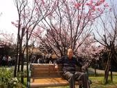 2010-2-26 陽明山花季:DSC01466.JPG