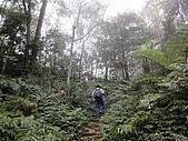 2010-1.5竹東五指山共26人:DSC00624.JPG
