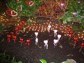 2012-02宜蘭風爭小木屋伯朗蘭花園礁溪武暖餐廳冬山河騎三輪車:DSC05398.JPG