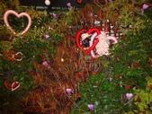 2012-02宜蘭風爭小木屋伯朗蘭花園礁溪武暖餐廳冬山河騎三輪車:DSC05399.JPG