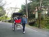 11/1~6日本自助六日探險:CIMG0141