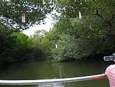 四草生態坐船遊紅樹林好多魚往船上跳台南新化兩日遊981123:CIMG4601.JPG