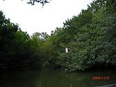 四草生態坐船遊紅樹林好多魚往船上跳台南新化兩日遊981123:CIMG4602.JPG