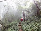 2010-1.5竹東五指山共26人:DSC00626.JPG