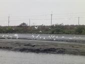 2010-2-16.至20日. 新年五日遊:DSC01223.JPG