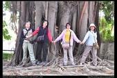 嘉義旅遊:20130317阿里山森林鐵路車庫園區3