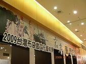 霹靂布布:2009台灣布袋戲文化藝術展1