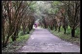 苗栗旅遊:20130728苗栗南庄向天湖6