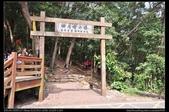 登山健行:20130309三義慈濟茶園6