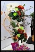 彰化旅遊:20120126彰化溪州公園-花在彰化館內篇9