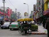 寧波行旅:20090308寧波北侖東河路1