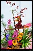 彰化旅遊:20120126彰化溪州公園-花在彰化館內篇11