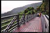新北旅遊:20120805八里觀音山林梢步道8