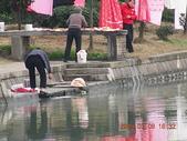 寧波行旅:20090308寧波北侖中河4