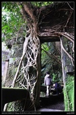 新北旅遊:20130119新北石碇老街3