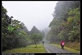 桃園旅遊:20110319東眼山