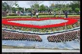 彰化旅遊:20120126彰化溪州公園-花在彰化苗圃區5