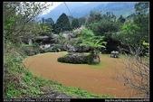 苗栗旅遊:20110305苗栗南庄蓬萊溪護魚步道5