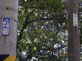 風火輪旅程:20081123七分寮風櫃嘴-瑪七產業道路5