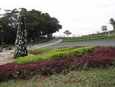 桃園旅遊:20060108大溪花海農場6