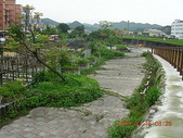 風火輪旅程:20090315七堵堤道-百一堤內道公園4