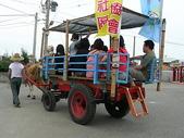 彰化旅遊:20080707彰化芳苑牛車踩踏-3