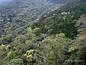 滿月圓檜谷線上多崖山:P1090011.jpg