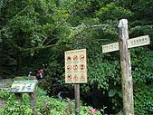 三角崙山聖母山莊步道:IMGP0632.JPG