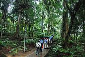 2009/12/21 馬來西亞-神山波令温泉-樹頂吊橋 :DSC_8556.jpg