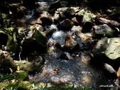 104/04/03 雙溪_蝙蝠山、苕谷瀑布、苕谷坑山:DSCN4995.jpg