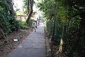 炎夏水管路半嶺水圳清涼行:DSC_2215.JPG