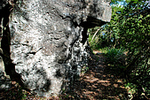2010/01/10錐麓古道  斷崖駐在所—錐麓斷崖—巴達岡:DSC_9635.jpg