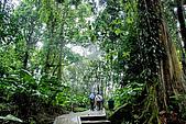 2009/12/21 馬來西亞-神山波令温泉-樹頂吊橋 :DSC_8557.jpg