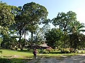2009/12/22 沙巴亞庇 -長鼻猴生態螢河保護區:DSC_8806.jpg