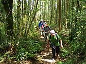 南山神木、米羅山:IMGP2199.jpg