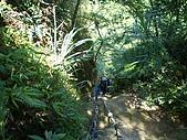 南港山攀岩:IMGP1824.JPG