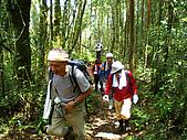 南山神木、米羅山:IMGP2200.jpg