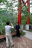 泰安橫龍山橫龍古道:DSC_5782水雲吊橋.jpg