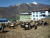 尼泊爾-聖母峰基地營(EBC)3/18-3/20:P1000123.JPG